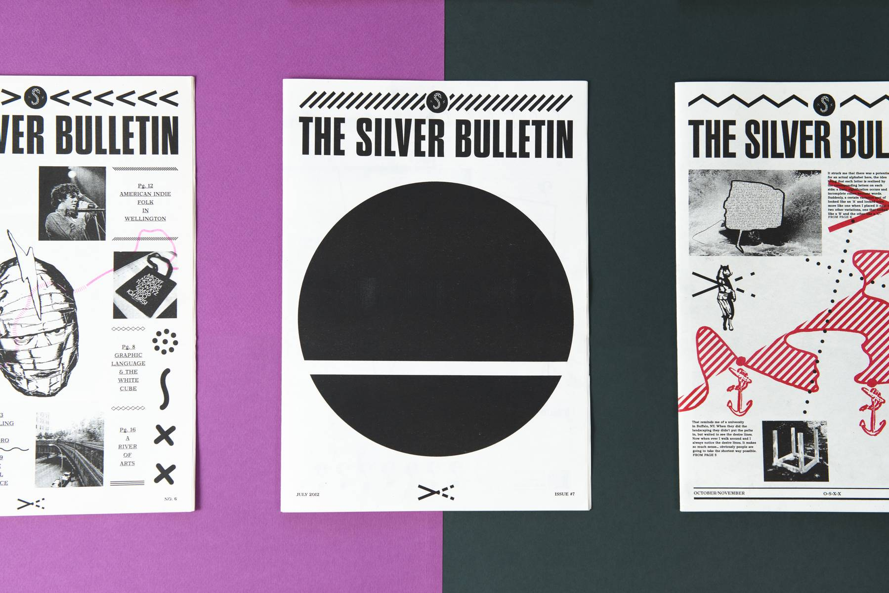 The Silver Bulletin 2012 image
